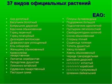 37 видов официальных растений ЕАО: Аир долотный Багульник болотный Боярышник ...