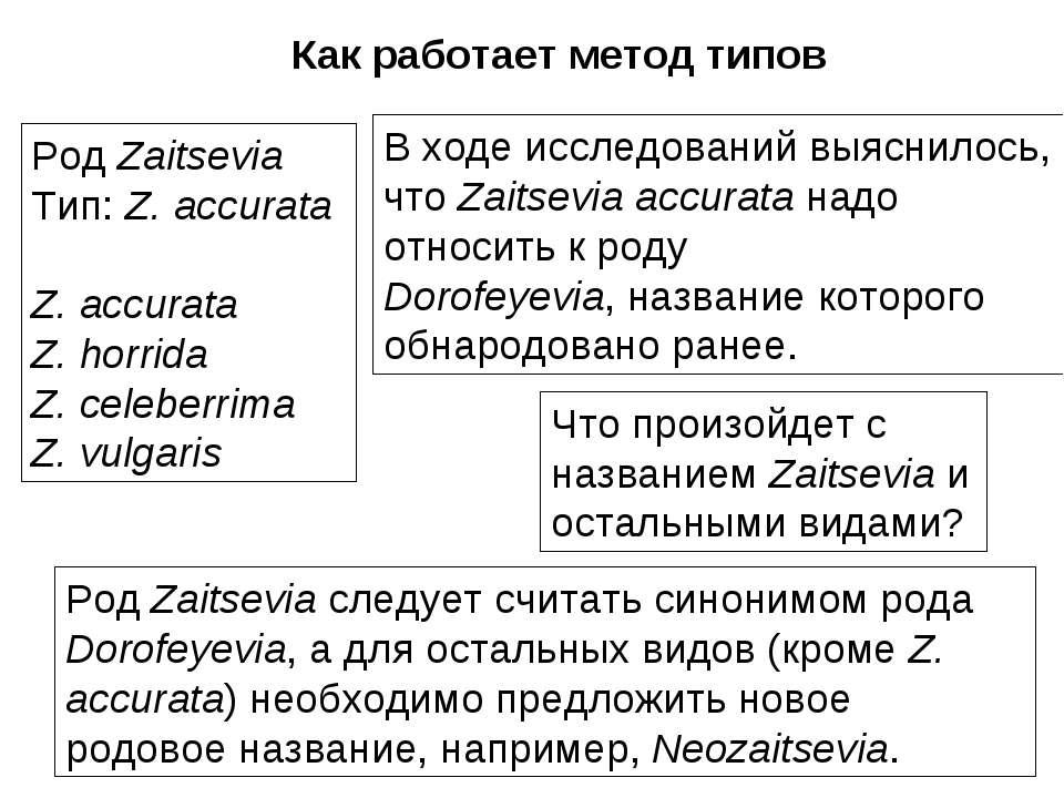 Род Zaitsevia Тип: Z. accurata Z. accurata Z. horrida Z. celeberrima Z. vulga...