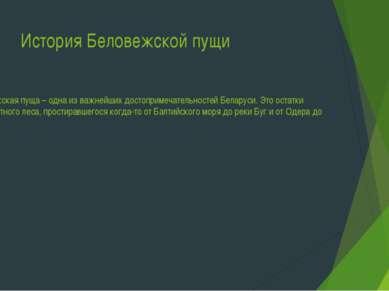 История Беловежской пущи Беловежская пуща – одна из важнейших достопримечател...