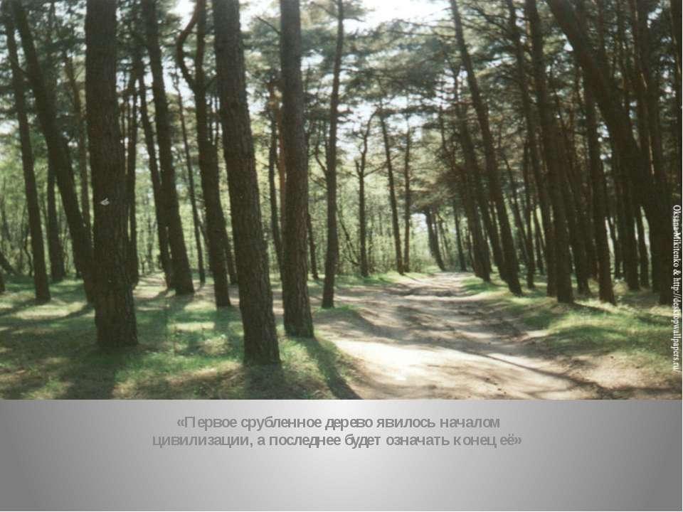 «Первое срубленное дерево явилось началом цивилизации, а последнее будет озна...