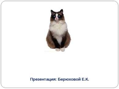 Презентация: Берюховой Е.К.