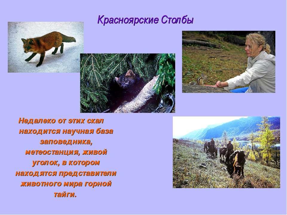 Красноярские Столбы Недалеко от этих скал находится научная база заповедника,...