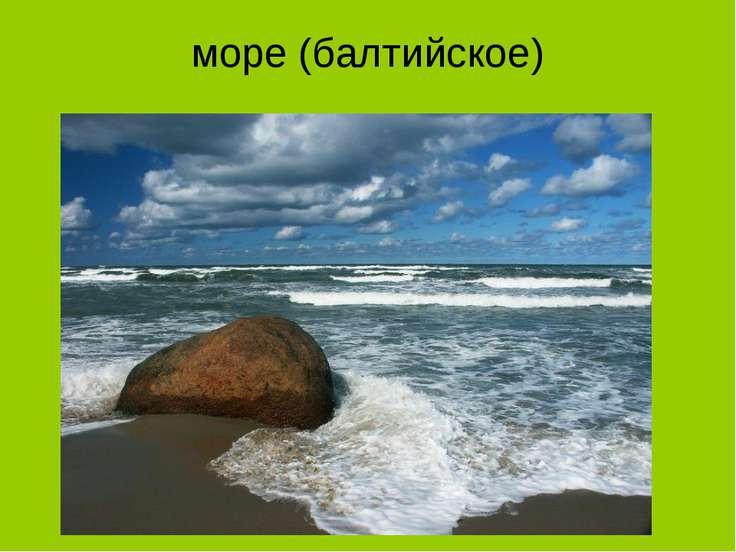 море (балтийское)