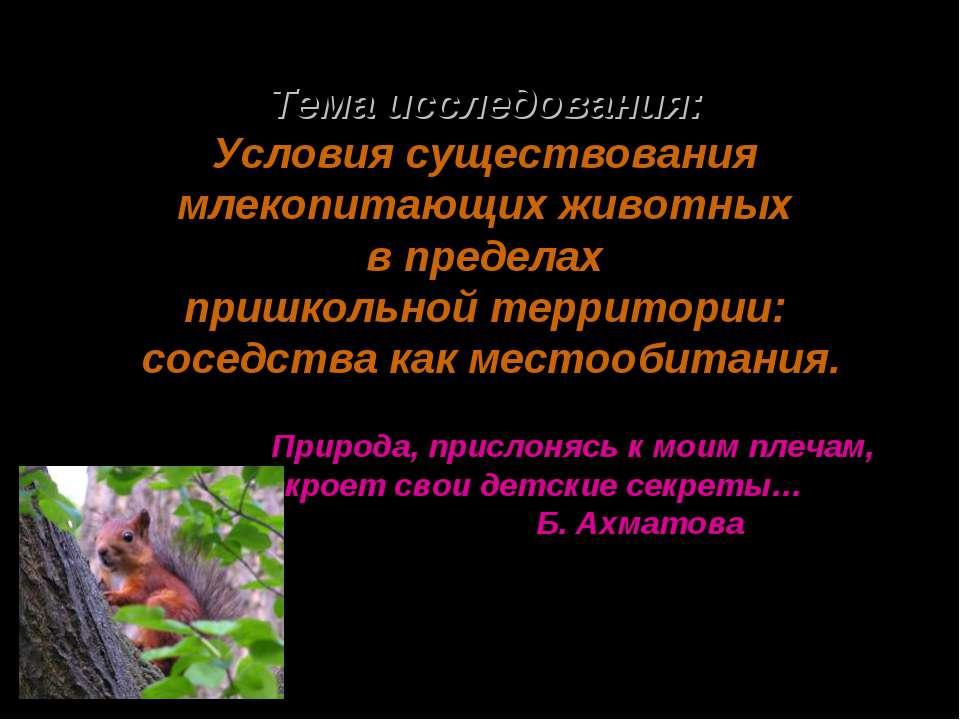 Тема исследования: Условия существования млекопитающих животных в пределах пр...