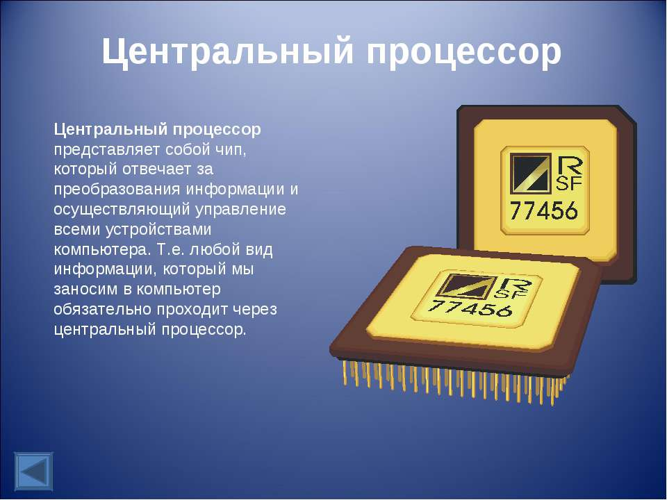 Центральный процессор Центральный процессор представляет собой чип, который о...