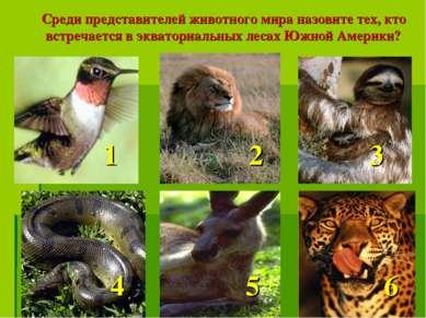 Среди представителей животного мира назовите тех, кто встречается в экваториа...
