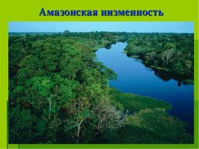 Амазонская низменность