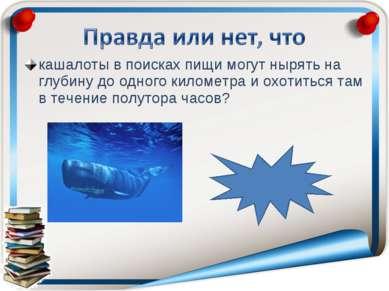 кашалоты в поисках пищи могут нырять на глубину до одного километра и охотить...
