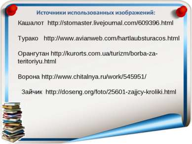 Кашалот http://stomaster.livejournal.com/609396.html Турако http://www.avianw...