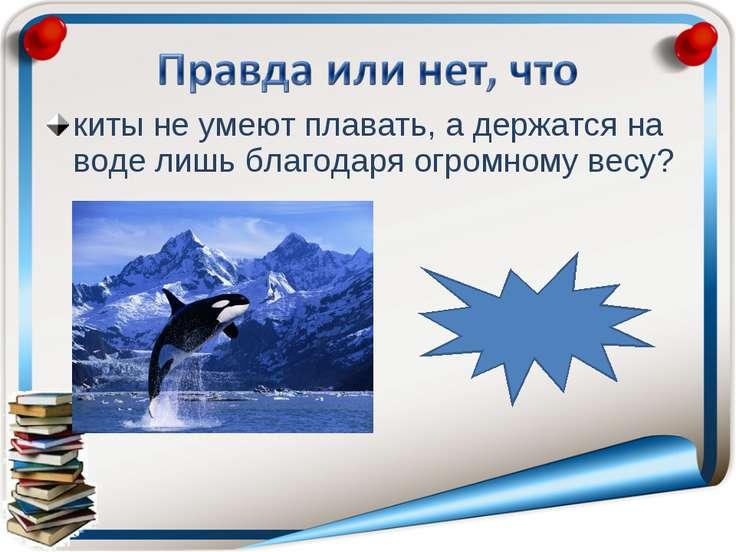 киты не умеют плавать, а держатся на воде лишь благодаря огромному весу? непр...