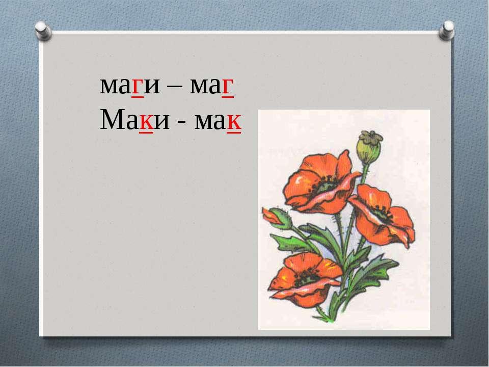 маги – маг Маки - мак