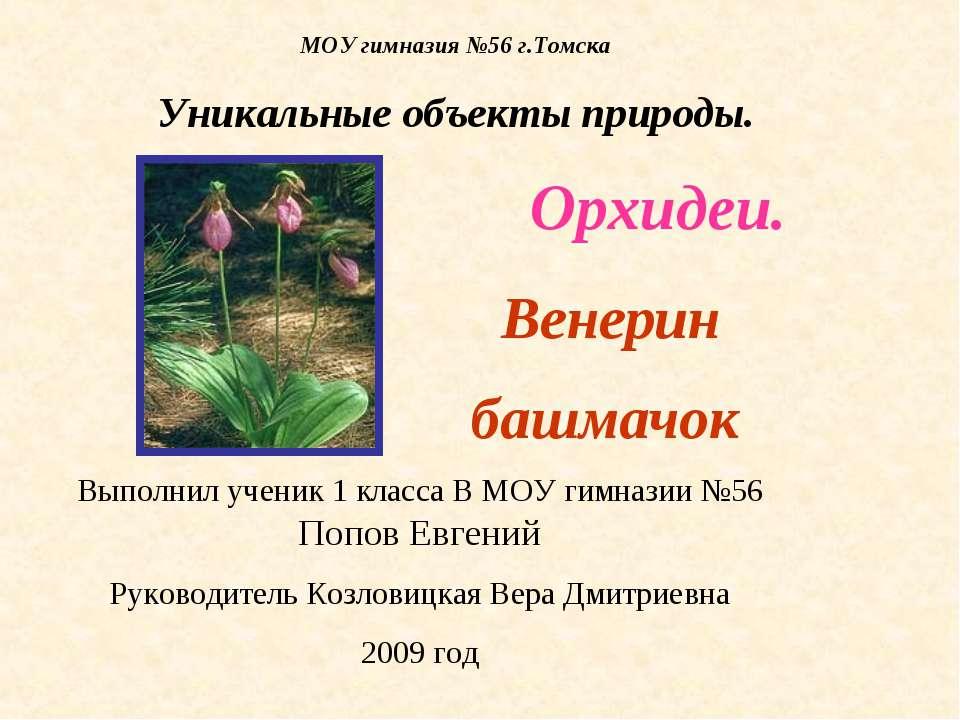 МОУ гимназия №56 г.Томска Уникальные объекты природы. Орхидеи. Венерин башмач...