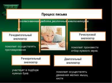 Процесс письма Речезрительный анализатор Двигательный анализатор Речедвигател...