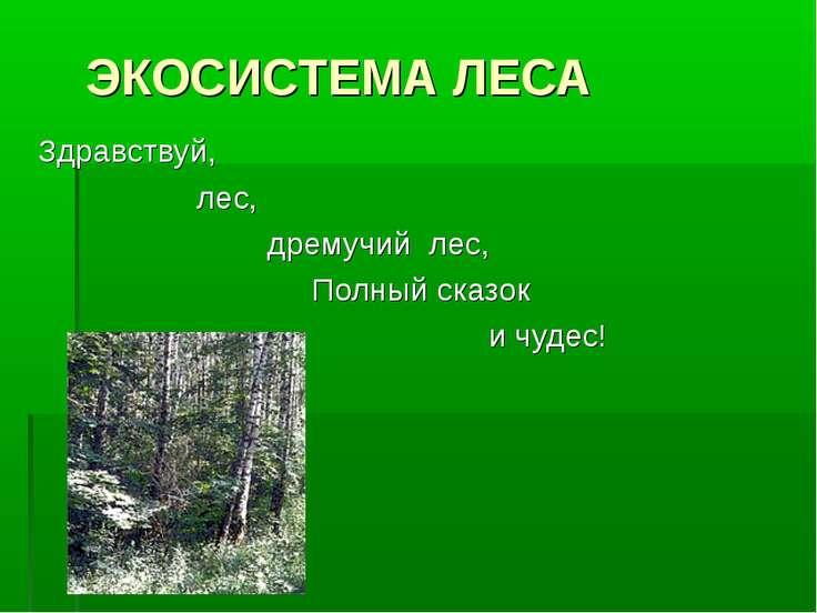 ЭКОСИСТЕМА ЛЕСА Здравствуй, лес, дремучий лес, Полный сказок и чудес!