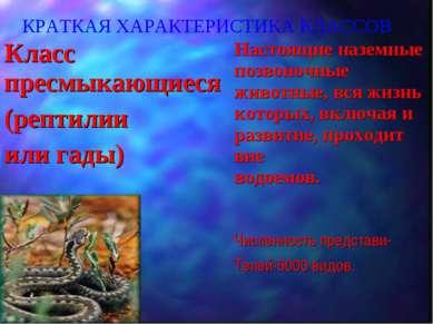 КРАТКАЯ ХАРАКТЕРИСТИКА КЛАССОВ Класс пресмыкающиеся (рептилии или гады) Насто...