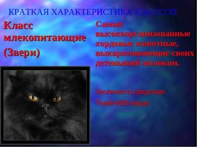 КРАТКАЯ ХАРАКТЕРИСТИКА КЛАССОВ Класс млекопитающие (Звери) Самые высокооргани...