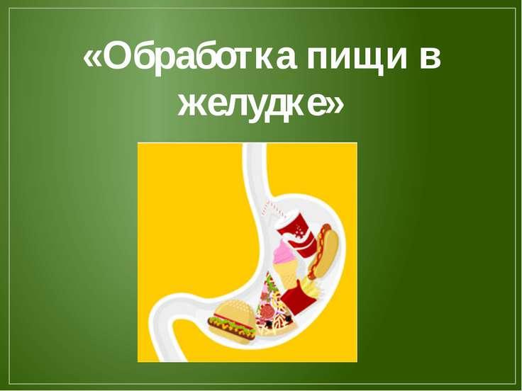 «Обработка пищи в желудке»