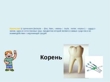 Корень зуба Биоло гия (с греческого βιολογία— βίος, биос, «жизнь»; -λογία, -...