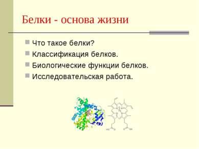 Белки - основа жизни Что такое белки? Классификация белков. Биологические фун...