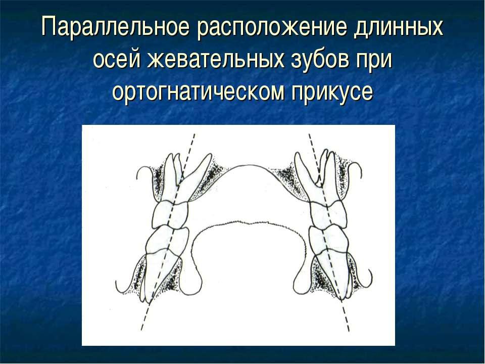Параллельное расположение длинных осей жевательных зубов при ортогнатическом ...