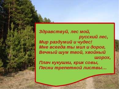 Здравствуй, лес мой, русский лес, Мир раздумий и чудес! Мне всегда ты мил и д...