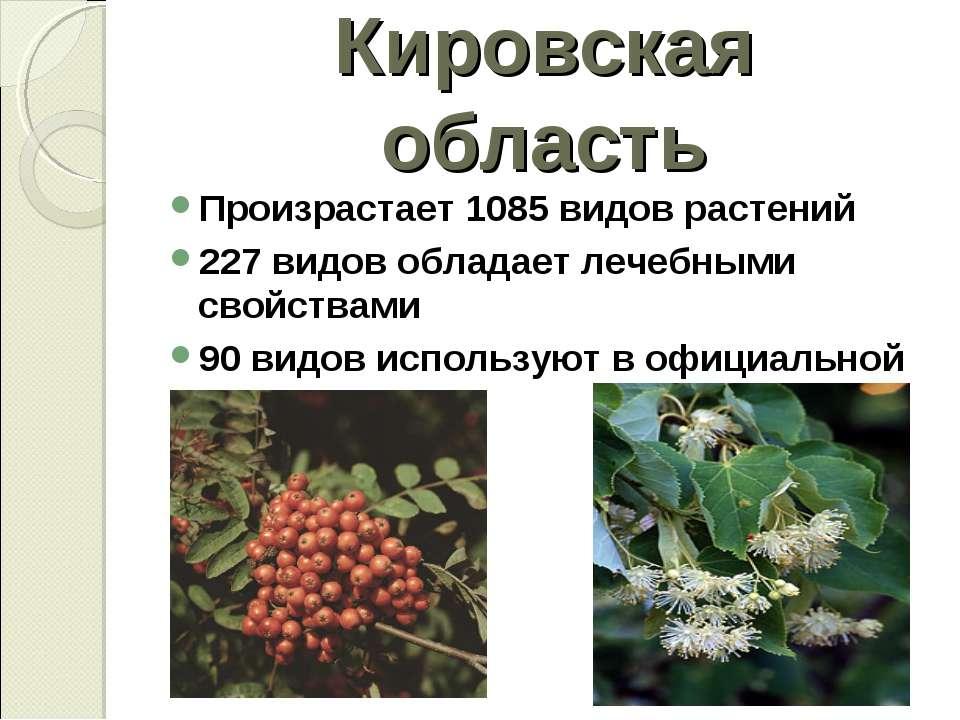 Кировская область Произрастает 1085 видов растений 227 видов обладает лечебны...