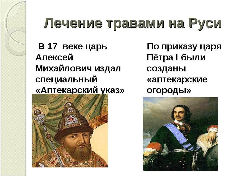 Лечение травами на Руси В 17 веке царь Алексей Михайлович издал специальный «...