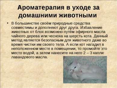 Ароматерапия в уходе за домашними животными В большинстве своём природные сре...