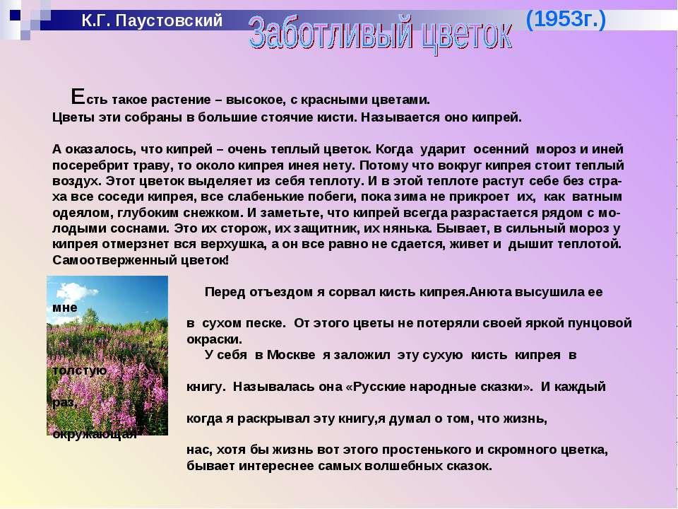 К.Г. Паустовский (1953г.) Есть такое растение – высокое, с красными цветами. ...