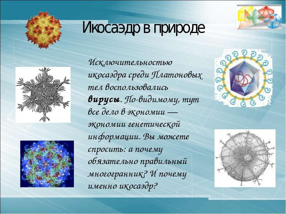 Икосаэдр в природе Исключительностью икосаэдра среди Платоновых тел воспользо...