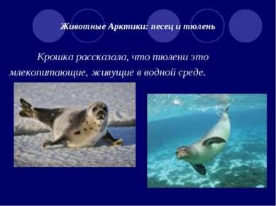 Животные Арктики: песец и тюлень Крошка рассказала, что тюлени это млекопитаю...