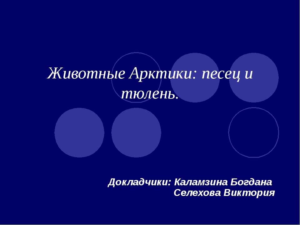 Животные Арктики: песец и тюлень. Докладчики: Каламзина Богдана Селехова Викт...
