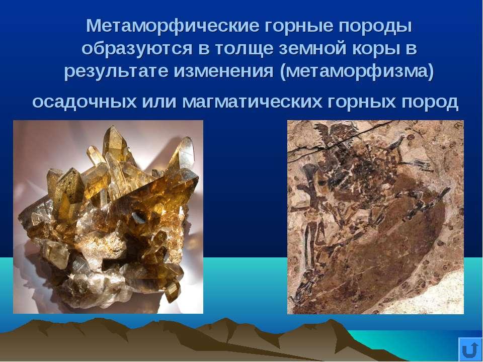 Метаморфические горные породы образуются в толще земной коры в результате изм...