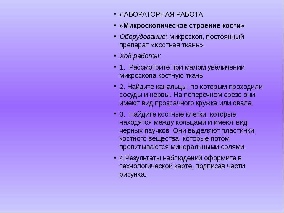 ЛАБОРАТОРНАЯ РАБОТА «Микроскопическое строение кости» Оборудование: микроскоп...