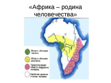 «Африка – родина человечества»