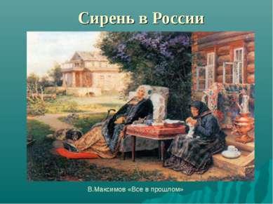 Сирень в России В.Максимов «Все в прошлом»