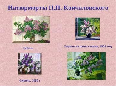 Натюрморты П.П. Кончаловского Сирень на фоне ставни, 1951 год Сирень, 1952 г ...