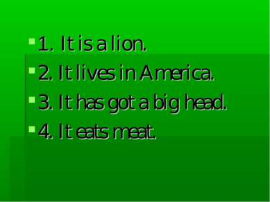 1. It is a lion. 2. It lives in America. 3. It has got a big head. 4. It eats...