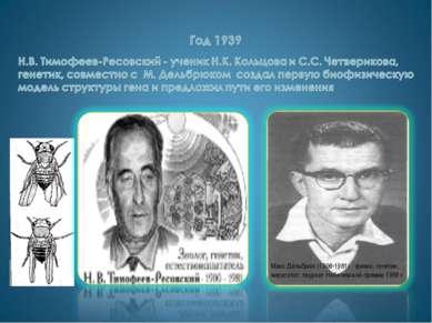 Макс Дельбрюк (1906-1981) - физик, генетик, вирусолог, лауреат Нобелевской пр...