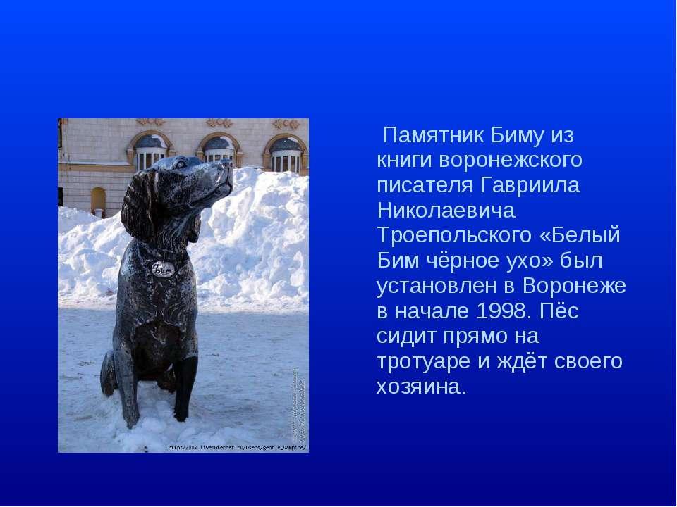 Памятник Биму из книги воронежского писателя Гавриила Николаевича Троепольско...