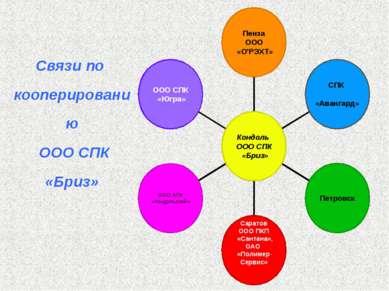 Связи по кооперированию ООО СПК «Бриз»