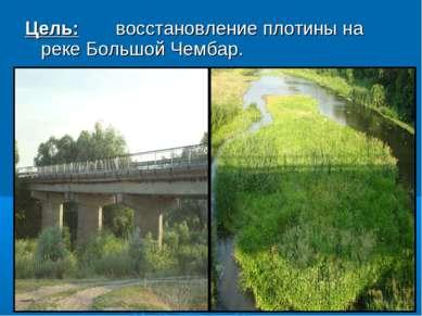 Цель: восстановление плотины на реке Большой Чембар.