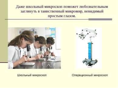 Даже школьный микроскоп поможет любознательным заглянуть в таинственный микро...