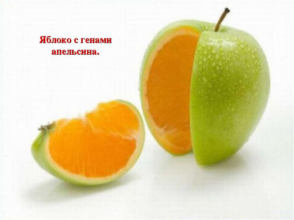 Яблоко с генами апельсина.