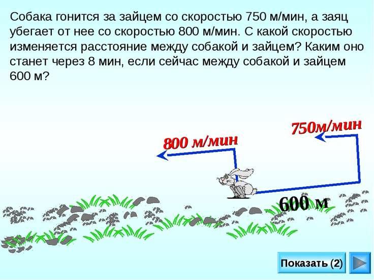 Показать (2) 600 м 800 м/мин 750м/мин Собака гонится за зайцем со скоростью 7...