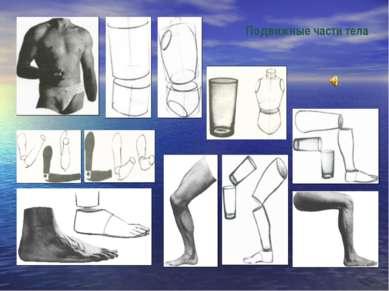 Подвижные части тела