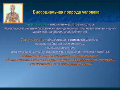 Биосоциальная природа человека Биологизаторство - направление философии, кото...