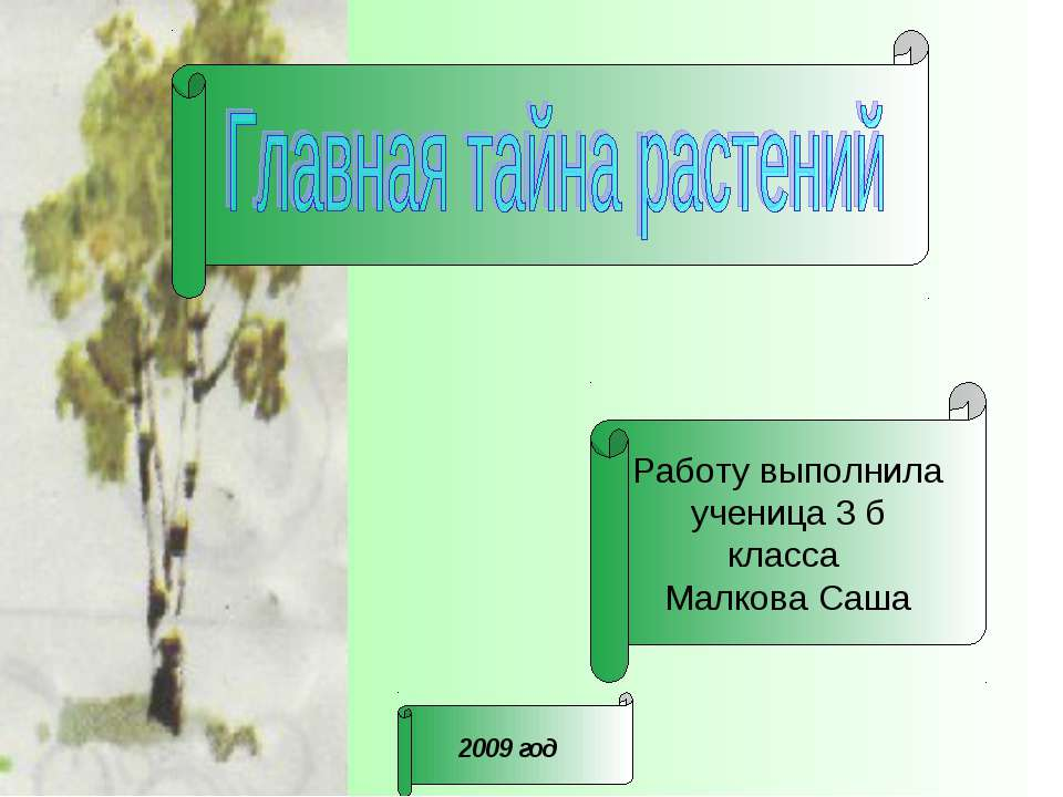 Работу выполнила ученица 3 б класса Малкова Саша 2009 год