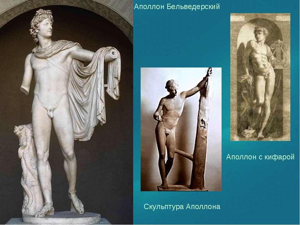 Аполлон Бельведерский Аполлон с кифарой  Скульптура Аполлона