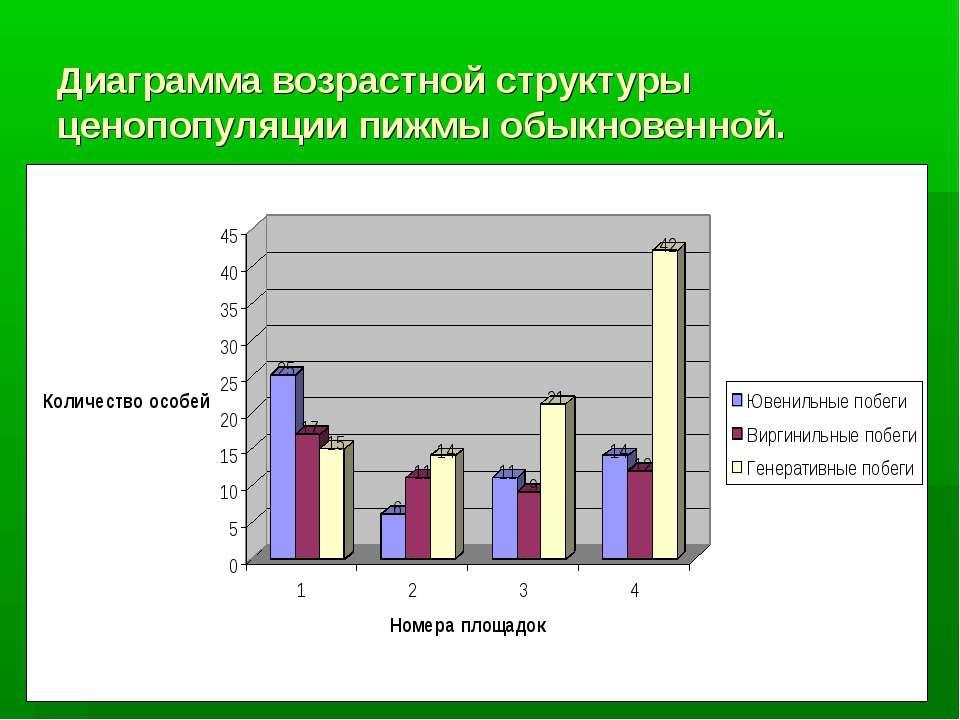Диаграмма возрастной структуры ценопопуляции пижмы обыкновенной.